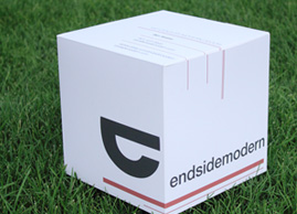 3D Business Card for endsidemodern